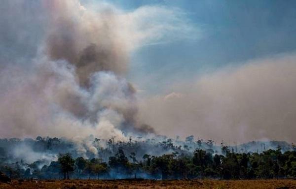 Amazon fires may enhance glacier melting: Study