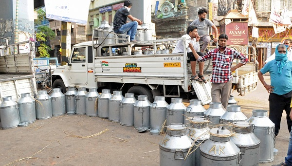 Special drive to provide KCCs to 1.5 cr dairy farmers launched
